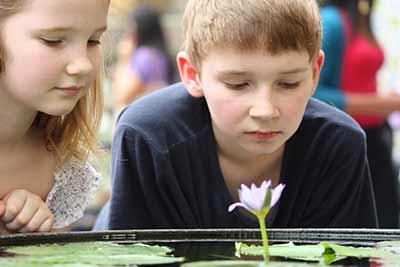 Ausbildung Achtsamkeitstrainer für Kinder