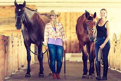 Ausbildung zum fitequi® TRAINER & COACH für pferdegestütztes Coaching und Training